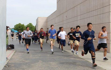 Run, swim, spike, tackle: summer sports!