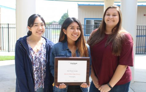 Yearbook wins award for picture perfect theme concept