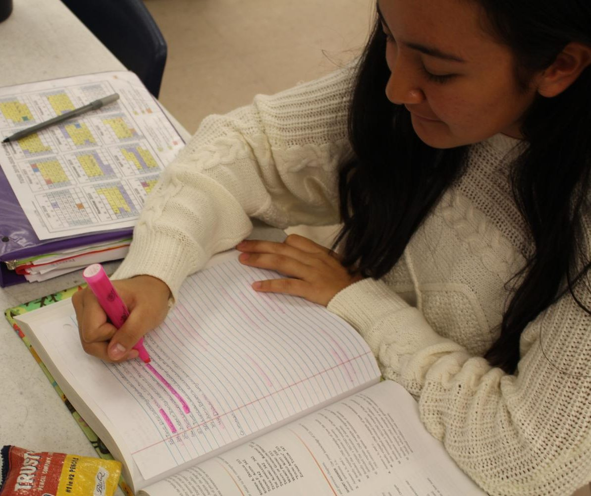 Junior Aria Jacinto highlights while studying for a test. Photo by Seemani Dash